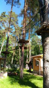 Детский веревочный парк на деревьях
