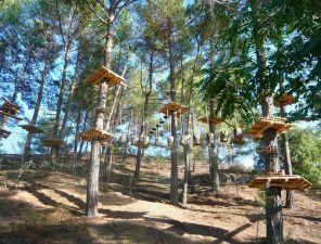 Строительство веревочного парка