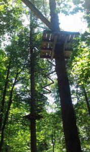 Веревочный парк на деревьях